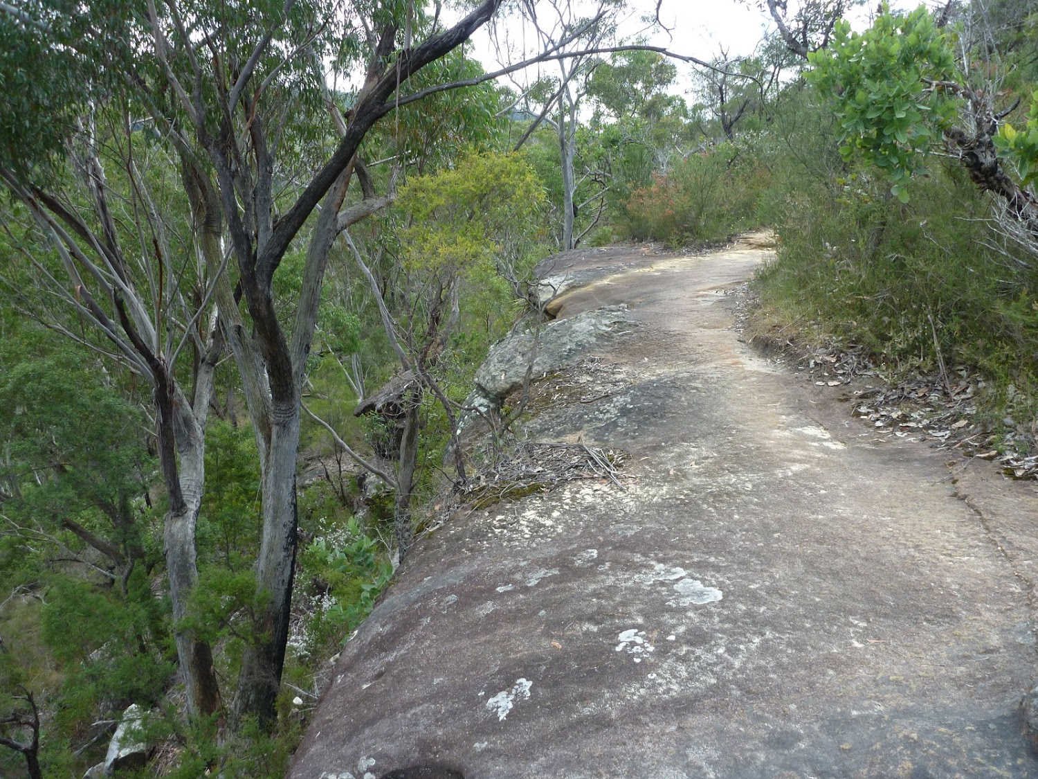 MM_20101012_002313_Walking along a rock platform west of Hornsby Heights